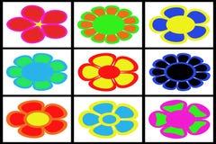 Coleção de flores coloridas Fotografia de Stock