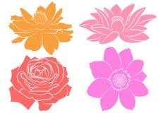 Coleção de flores da silhueta Fotografia de Stock