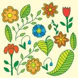 Coleção de flores e das folhas diferentes Fotos de Stock Royalty Free