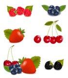 Coleção de frutas de baga. Foto de Stock Royalty Free