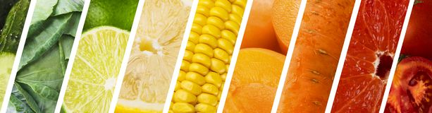 Cole??o de frutas e legumes frescas, cores do arco-?ris imagem de stock royalty free