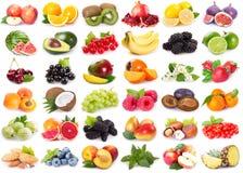 Coleção de frutas frescas fotos de stock royalty free