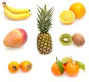 Coleção de frutas tropicais Fotos de Stock Royalty Free