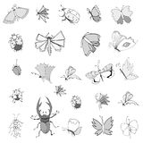Coleção de insetos do desenho da mão Imagens de Stock Royalty Free
