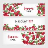 A coleção de moldes horizontais da bandeira com lingonberries entrega tirado no fundo branco e coloca para o texto naughty ilustração stock