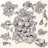 Coleção de ornamento do vetor no estilo do vintage ilustração do vetor