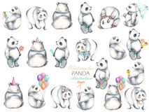 Coleção de pandas da aquarela, mão tirada isolada em um fundo branco ilustração do vetor