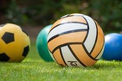 Coleção de quatro bolas na grama Fotografia de Stock Royalty Free