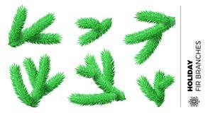 Coleção de ramos de árvore pequenos do abeto por ornamento dos feriados do Natal ou do ano novo ilustração royalty free