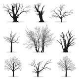 Coleção de silhuetas das árvores ilustração royalty free