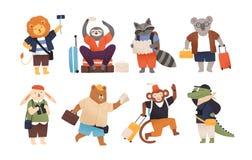 Coleção de turistas felizes bonitos ou de viajantes dos animais selvagens Pacote de personagens de banda desenhada de divertiment ilustração do vetor