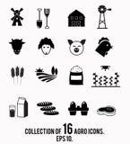 Coleção do ícone da exploração agrícola Imagens de Stock Royalty Free