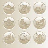Coleção do ícone da natureza Ícones com um peixe, uma rã, uma serpente, um pato, um cão, um besouro, uma folha, uma lupa, uma per ilustração stock