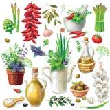 Coleção do alimento ilustração stock