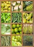 Coleção do alimento verde imagens de stock royalty free