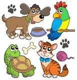 Coleção do animal de estimação Fotos de Stock