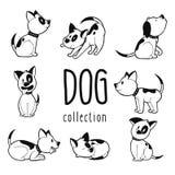 A coleção do cão tirado mão em oito posturas diferentes vector a ilustração ilustração do vetor