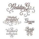 Coleção do casamento Noivo Invitation da noiva ilustração stock