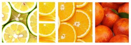 Coleção do citrino Imagens de Stock