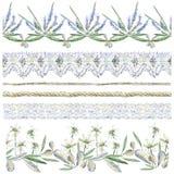 Coleção do clipart da aquarela de beiras sem emenda Estuques da flor Fotos de Stock Royalty Free