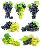 Coleção do conjunto maduro da uva da fruta isolado Fotos de Stock