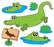 Coleção do crocodilo Fotos de Stock