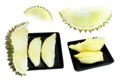 Coleção do Durian, rei dos frutos isolados no fundo branco Fotos de Stock