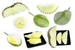 Coleção do Durian, rei dos frutos isolados no fundo branco Fotografia de Stock
