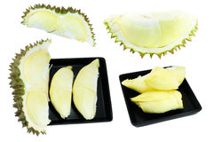 Coleção do Durian, rei dos frutos isolados no fundo branco Fotos de Stock Royalty Free