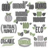 Coleção do eco e de bio etiquetas, crachás Tema da ecologia Imagem de Stock