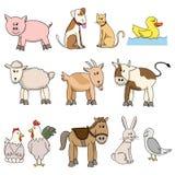 Coleção do estoque do animal de exploração agrícola Foto de Stock
