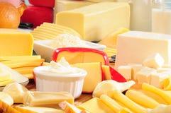 Coleção do queijo Foto de Stock