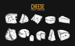Coleção do queijo Vetor Imagens de Stock Royalty Free