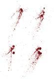 Coleção do sangue ou dos splatters da pintura Fotos de Stock