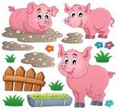 Coleção 1 do tema do porco ilustração stock