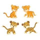 A coleção do tigre e do leopardo ilustração stock