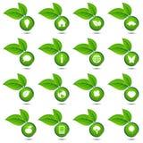 Coleção do vetor de ícones ecológicos Foto de Stock