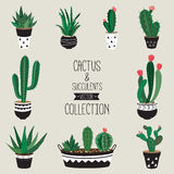 Coleção do vetor dos cactos e das plantas carnudas Fotos de Stock