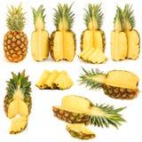 Coleção dos abacaxis Fotografia de Stock