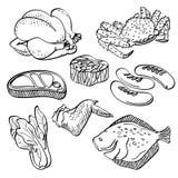 Coleção dos alimentos frescos ilustração stock