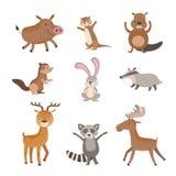 Coleção dos animais da floresta ilustração do vetor
