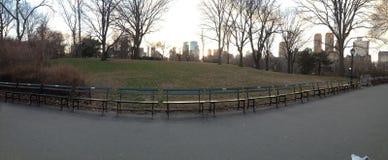Coleção dos bancos do Central Park Fotos de Stock Royalty Free