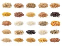 Coleção dos cereais Fotografia de Stock Royalty Free