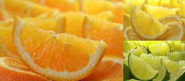 Coleção dos citrinos Foto de Stock Royalty Free