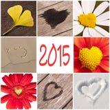 2015, coleção dos corações Fotografia de Stock Royalty Free