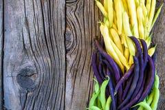 Coleção dos feijões de arbusto verdes, amarelos e roxos, ervilhas verdes abertas no fundo de madeira Foto de Stock
