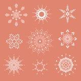 Coleção dos flocos de neve, flocos de neve naturais do Natal, estrelas do Natal, para o projeto Imagem de Stock Royalty Free