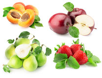 Coleção dos frutos isolados no fundo branco Imagens de Stock