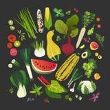 Coleção dos frutos, dos vegetais, de verdes frondosos e de ervas comuns ilustração royalty free