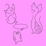 Coleção dos gatos. Fotografia de Stock Royalty Free